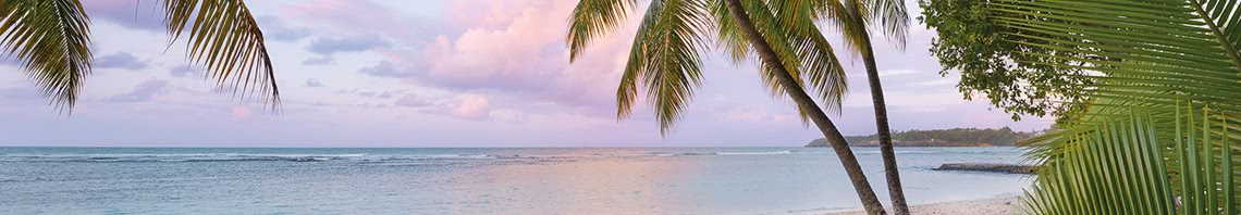 Beaches Non-woven Photomurals