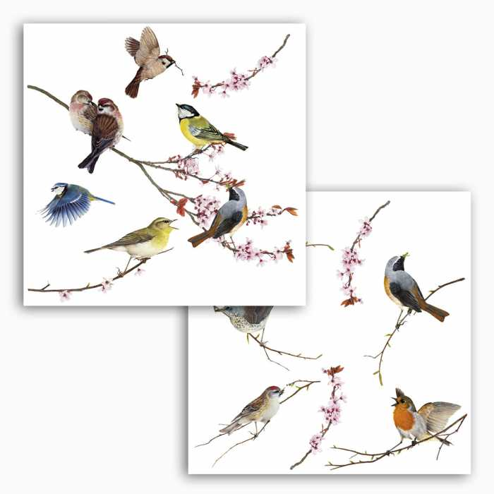 Window sticker Birds