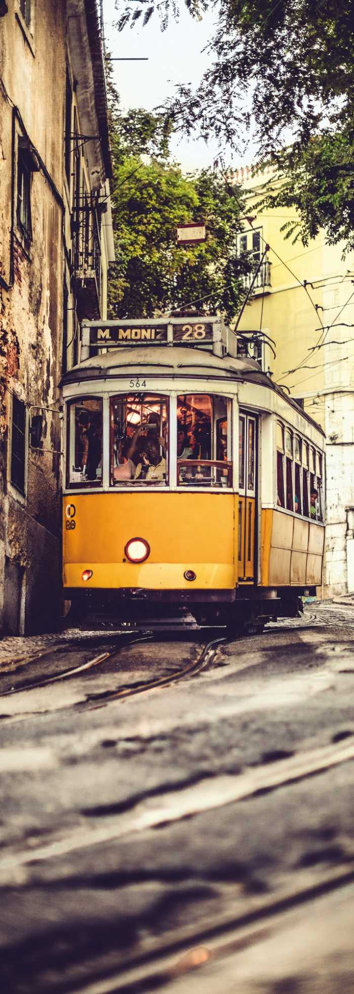 Panel Lissabon