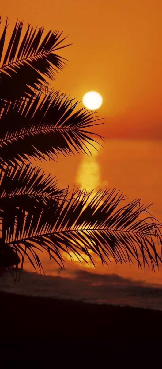 Photomural Sunset