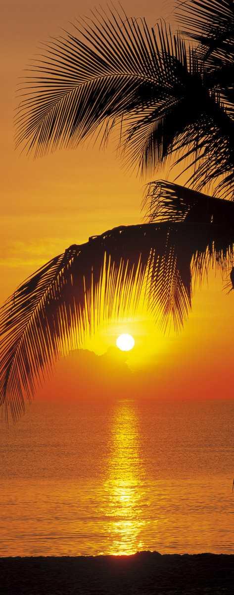Photomural Palmy Beach Sunrise