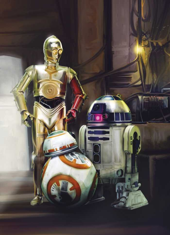 Photomural Star Wars Three Droids