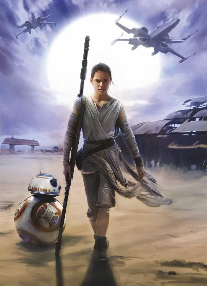 Photomural Star Wars Rey