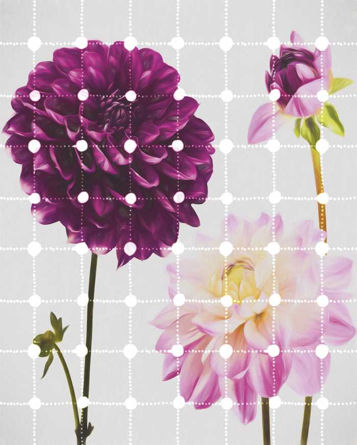 Digital wallpaper Flowers & Dots