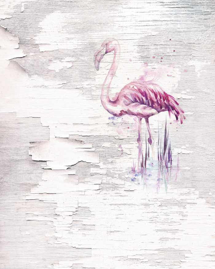 Digital wallpaper Pink Flamingo