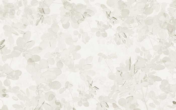 Digital wallpaper Sheer Grey