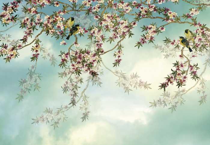 Photomural Sakura