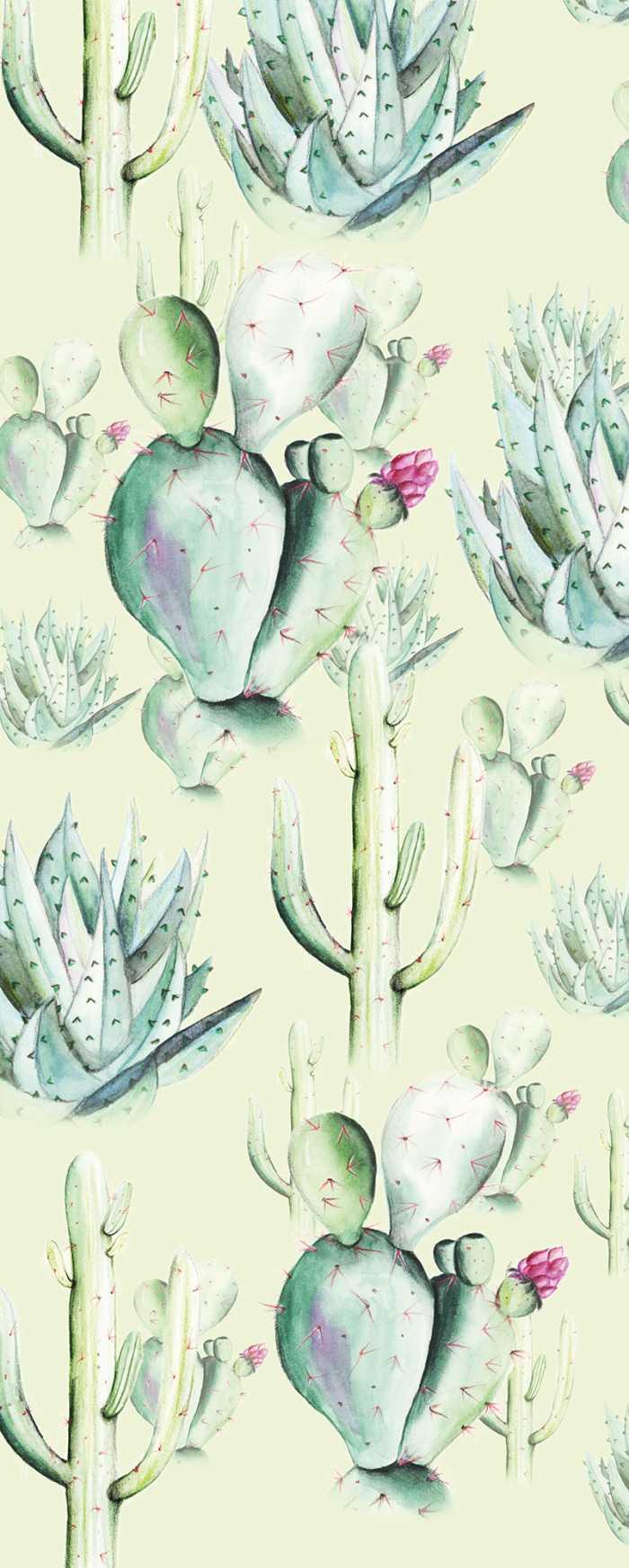 Digital wallpaper Cactus Green