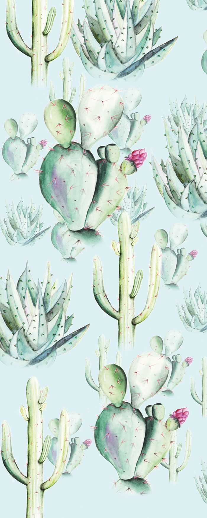 Digital wallpaper Cactus Blue