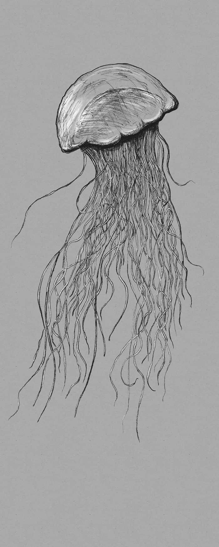 Digital wallpaper Jellyfish
