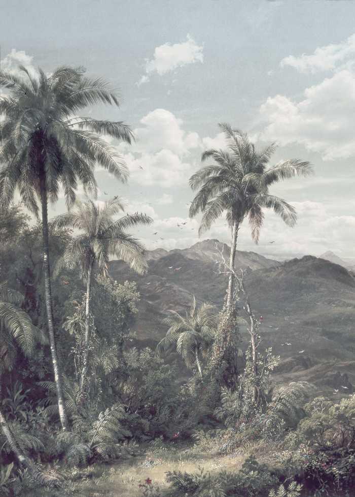 Digital wallpaper The Exotic Land