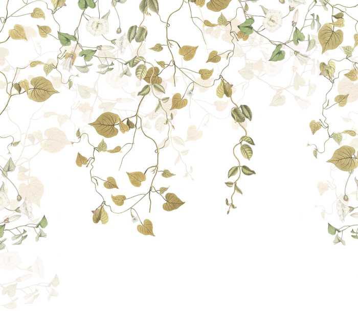 Digital wallpaper Hedera