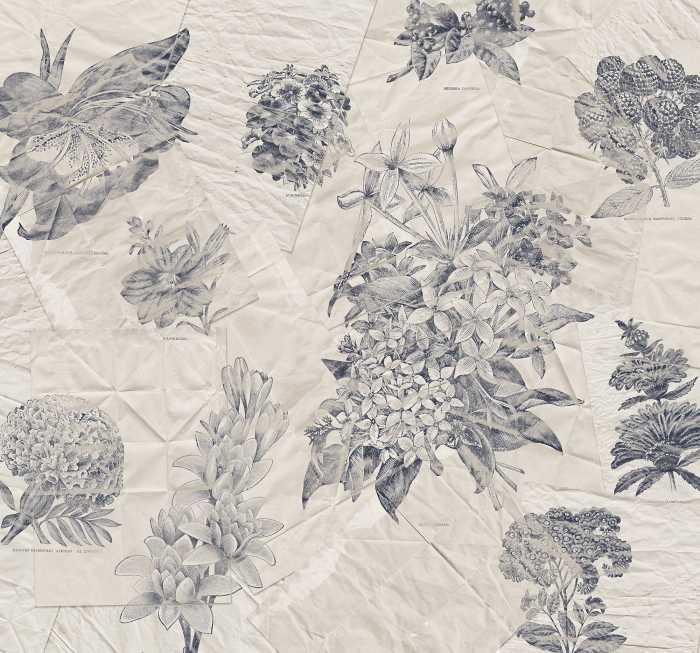 Digital wallpaper Botanical Papers