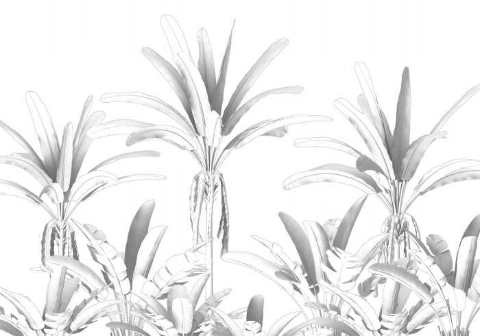 Digital wallpaper Musa