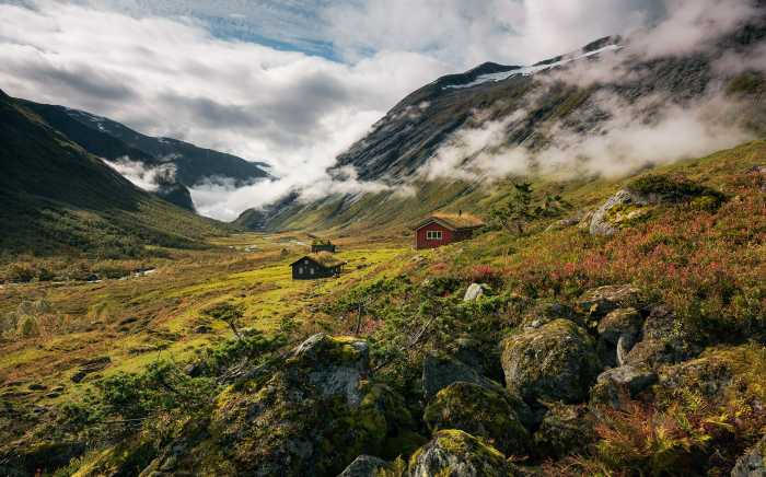 Digital wallpaper Pure Norway