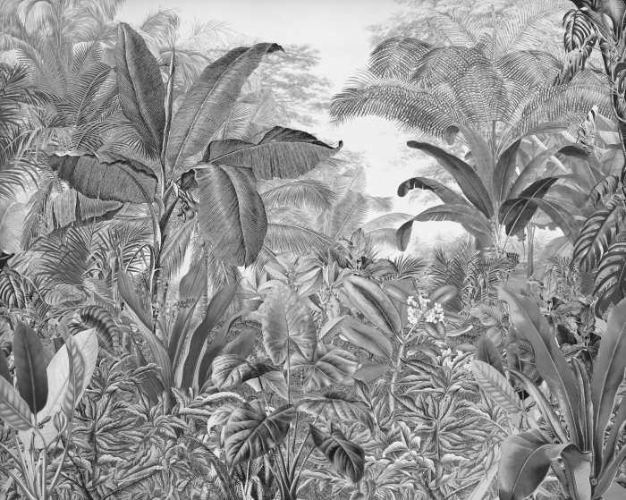Digital wallpaper Roraima
