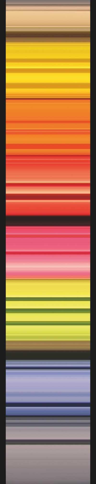Non-woven photomural Stripes