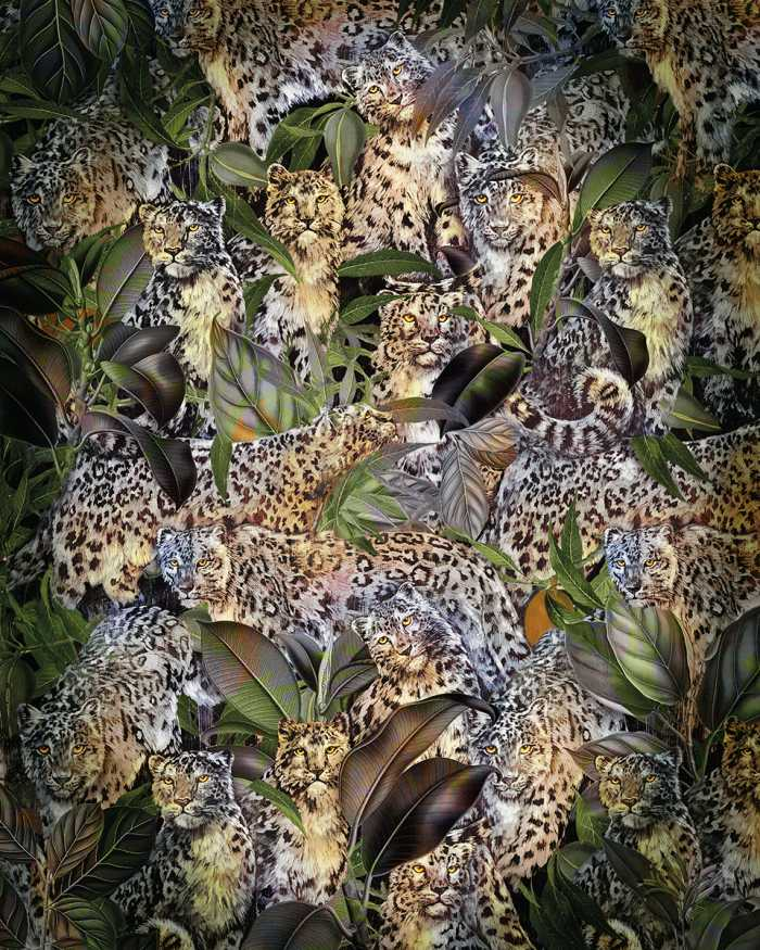 Digital wallpaper Wild Cats