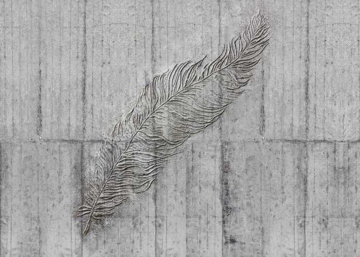 Digital wallpaper Concrete Feather