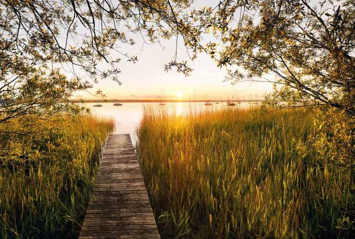 Digital wallpaper Lakeside