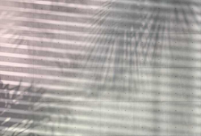 Non-woven photomural Shadows