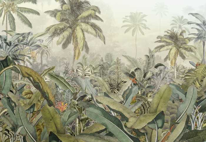 Non-woven photomural Amazonia