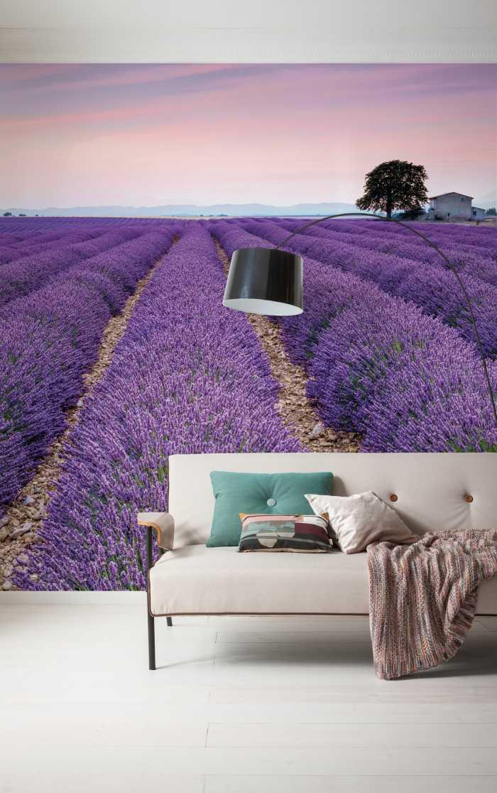 Non-woven photomural Provence