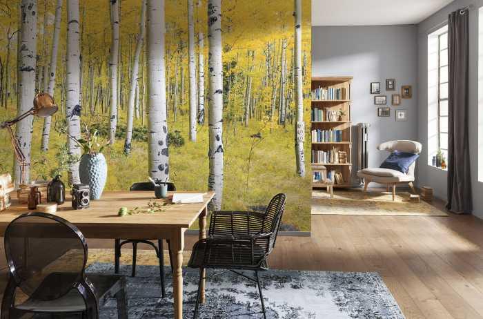 Digital wallpaper Orange Forest