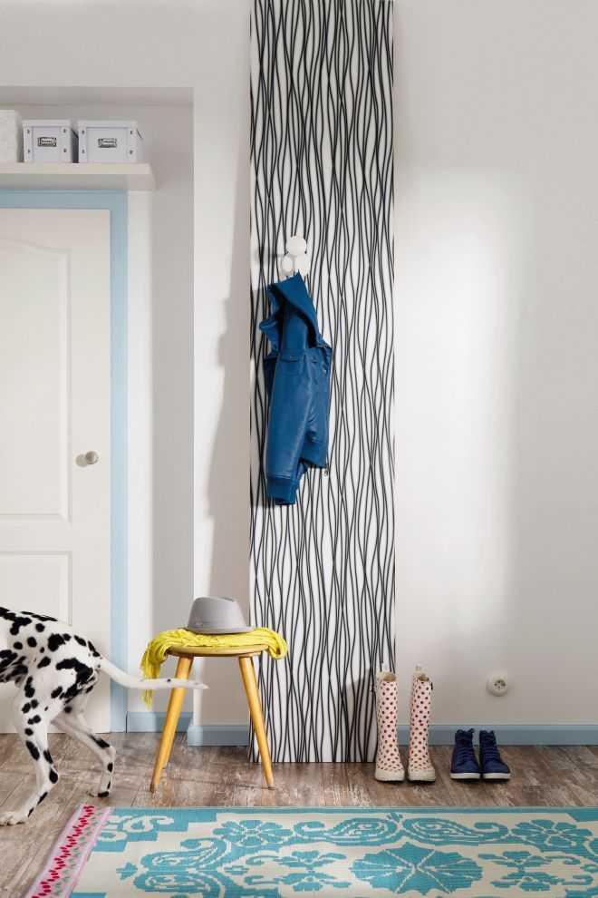 Non-woven photomural Zebra