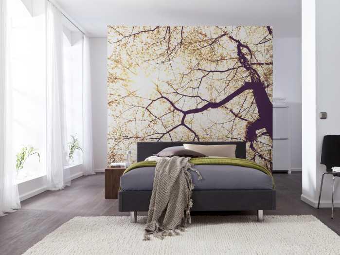 Digital wallpaper Sunshine