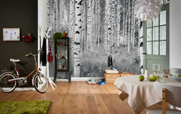 Non-woven photomural Woods