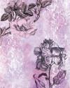 Baroque Pink