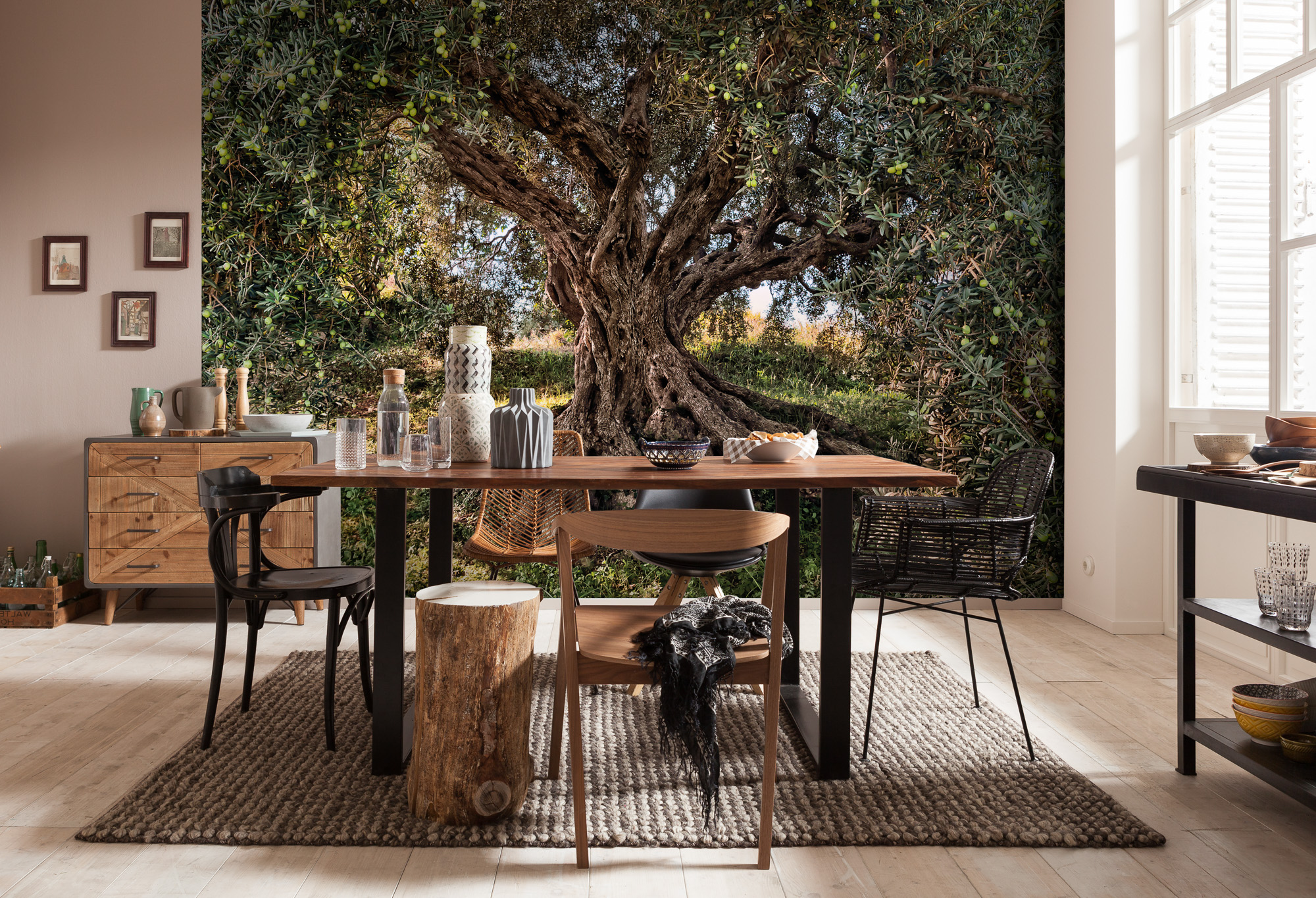 Kitchen with olive tree